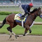Wicked Strong has already won once at Belmont, in a 1-mile maiden race last October. AP Photo/Morry Gash)